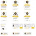 Echte Bewertungen - verschiedene Versionen bestimmen das Aussehen des Widgets