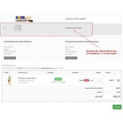 Rechnung, Zahlungsmodul
