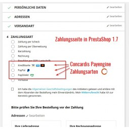 Concardis Payengine, Zahlungsmodul PS1.7 - Zahlungsseite